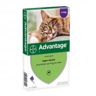 Advantage Cat preko 4kg