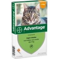 Advantage Cat do 4kg